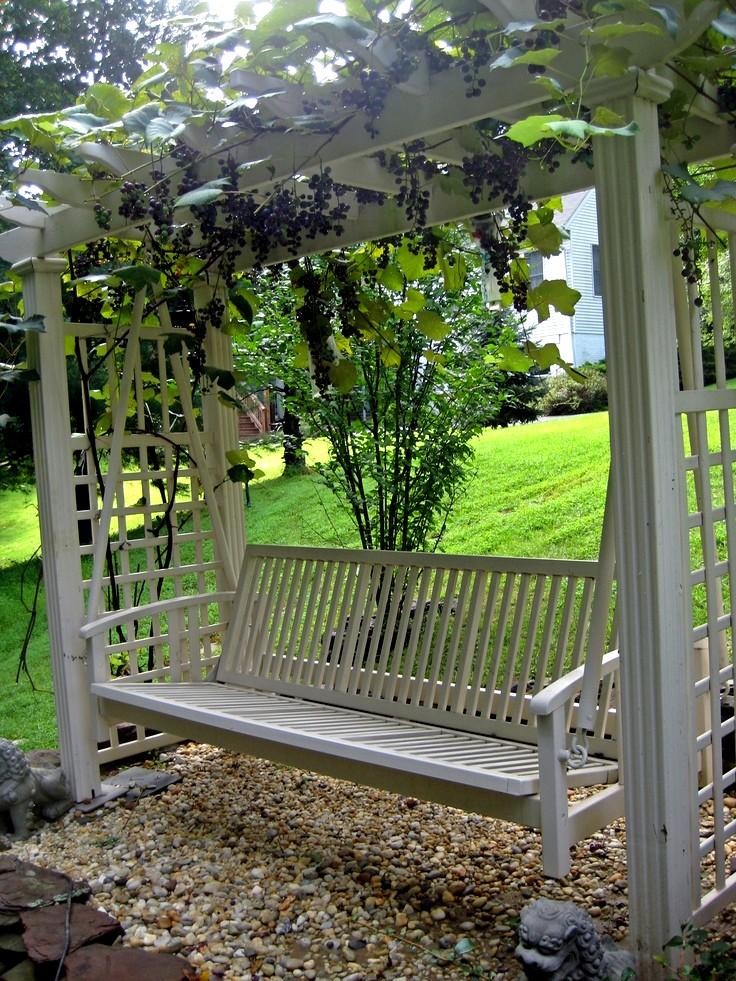 construire une treille pour la vigne ma passion du verger. Black Bedroom Furniture Sets. Home Design Ideas