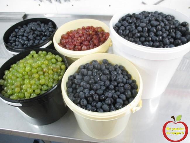 Avec 30 litres de raisins.