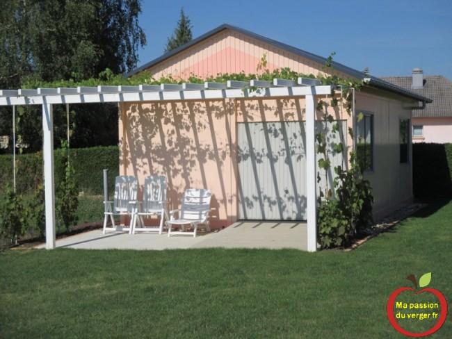 Pergola ou treille avec la vigne en été pour faire de l'ombre.- planter vigne sur treille- planter vigne sur pergola- quel variété de vigne pour pergola ou treille-