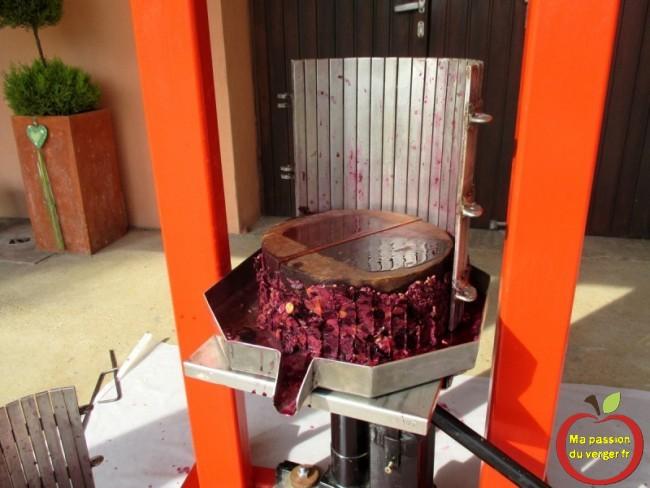 Pressage du raisin, pour réaliser un bon vin soi-même- marc de raisin après le pressurage- eau-de vie de marc.- regrevudnoissapamegres