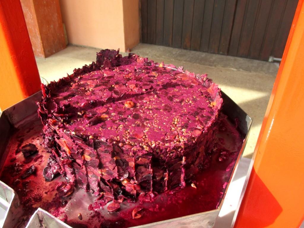 Pas mal, le petit gâteau de marc de raisin.