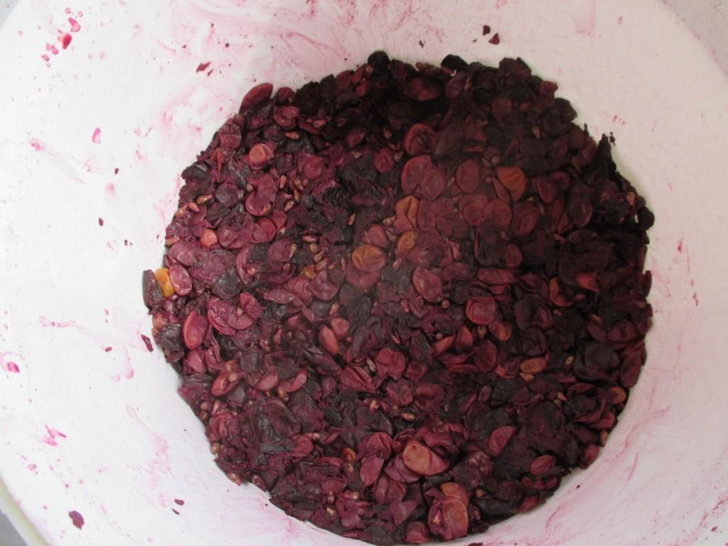 Environ 3 litres de marc de raisin.