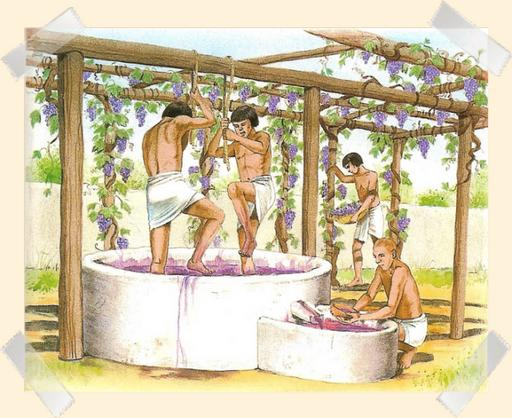 la fabrication du vin depuis des siècles