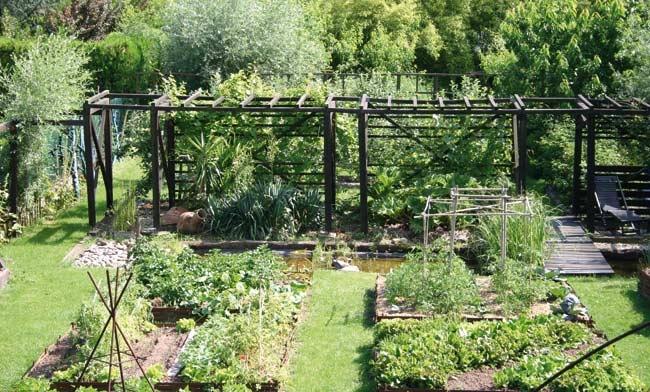 Construire une treille pour la vigne ma passion du verger for Construire serre de jardin