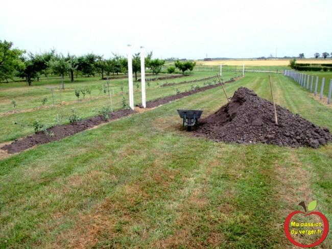 rajouter terre végétal sous arbres fruitiers