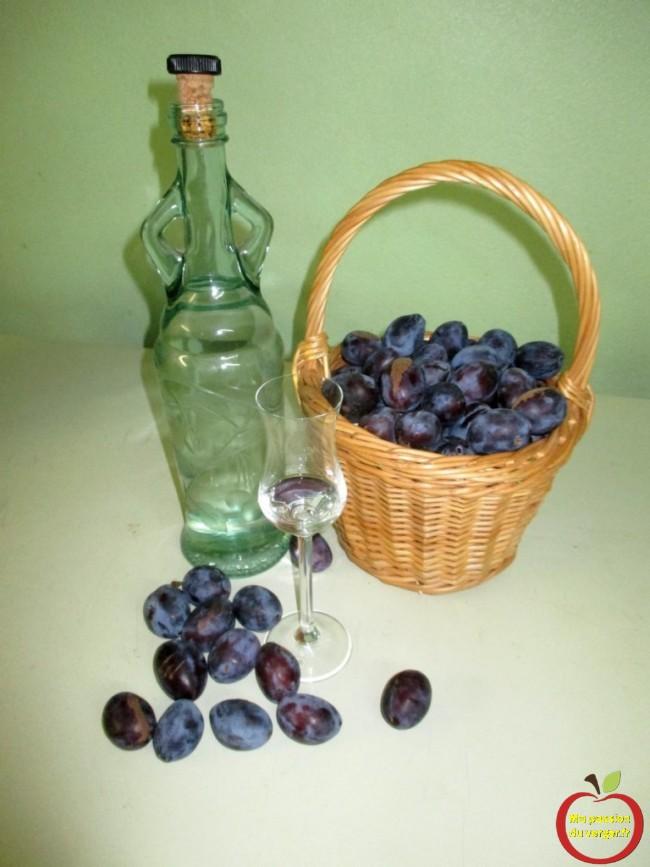 bonne eau-de-vie quetsche d'Alsace artisanal -flaumenernte fur gutten schnaps -alcool de quetsche, gnole de quetsche