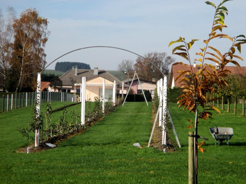 comment réaliser des arches pour tonnelles pour arbres fruitiers et vigne