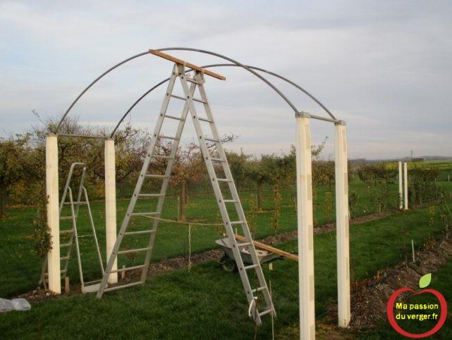 hauteur et dimension des arches de la tonelle du palissage