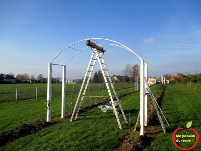 mise en place des arche et montage des traverses pour maintenir la structure de la tonnelle.