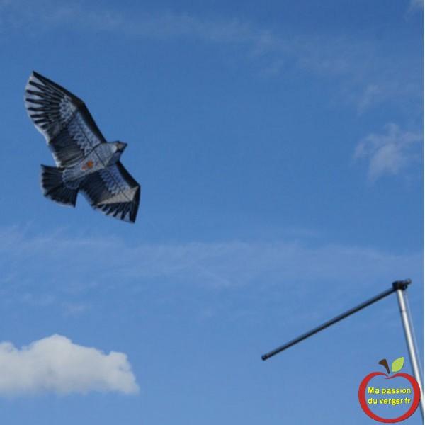 Triangle outillage- Triangle -cerf-volant-effaroucheur-rapace, pour la protection des fruits et des cultures, contre les oiseaux.
