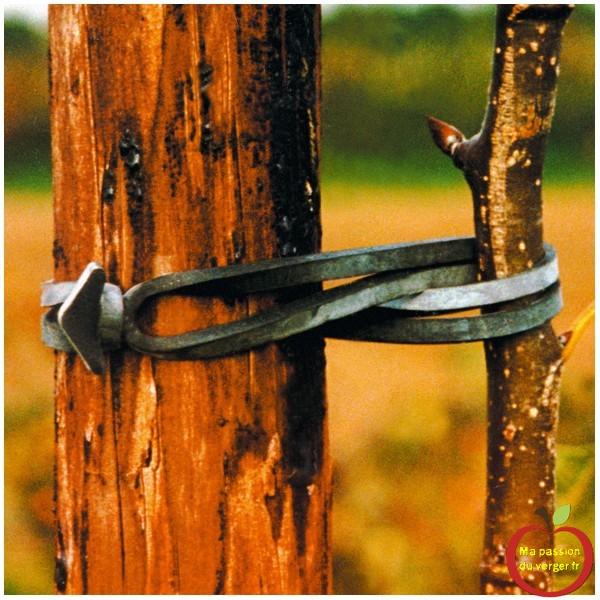 lien-caoutchouc-epdm-duree-de-vie-3-5-ans, pour attacher en fixation croisé, vos arbres aux tuteurs, sans risque