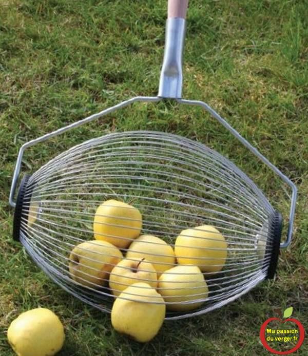 Triangle outillage- Triangle -ramasse-pomme-triangle ramasser les pommes sans se baisser d''un simple mouvement, en faisant rouler le rouleau à même le sol