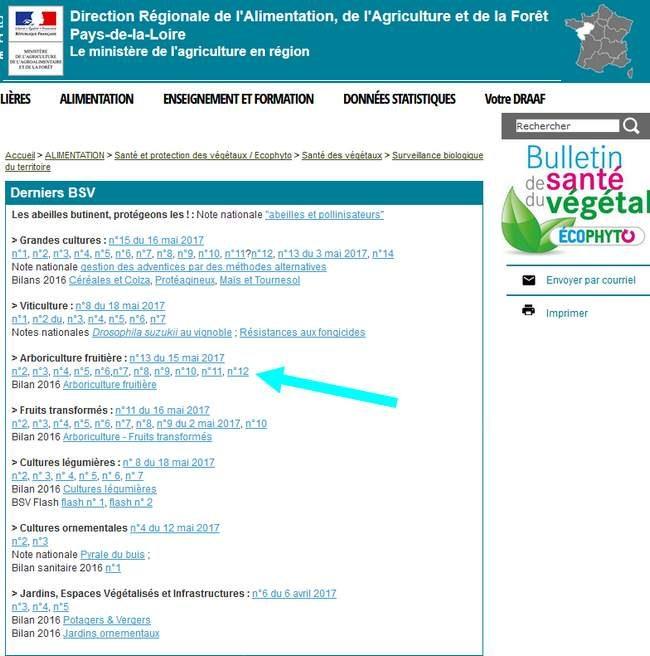 Bulletin de santé des végétaux de toute la France - Bulletin de santé végétal région par région -