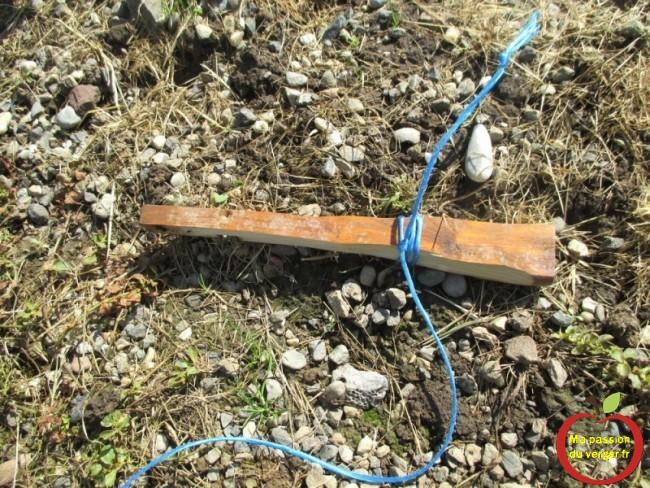 laisser dépasser la ficelle, de 15 à 20 cm, pour pouvoir y attacher un autre branche, si nécessaire.