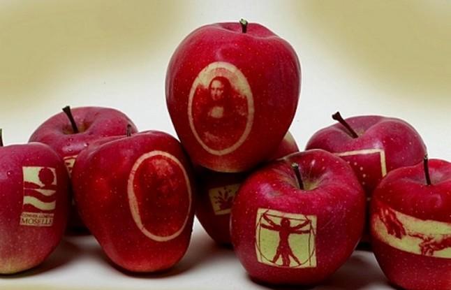 1426-1287673099-pommes-moselle-465fx349f