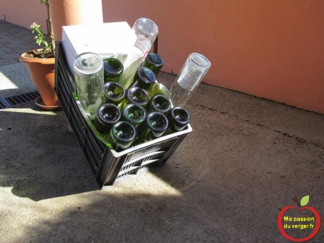Le lavage des bouteilles, pour le vin.