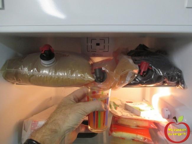 Stockage des poches au réfrigérateur en été. Je fais un mélange multifruits ou nature selon mon envie.