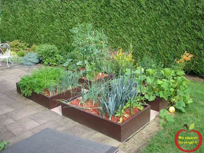 Potager en carré permaculture