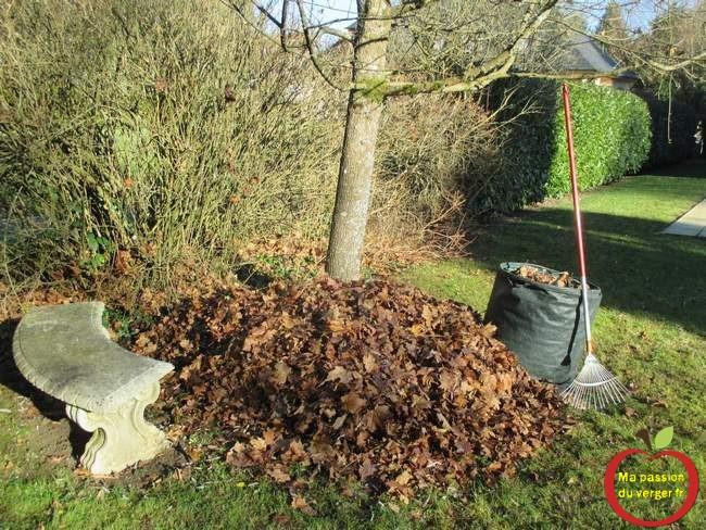recyclage des feuilles, pour potager en permaculture.