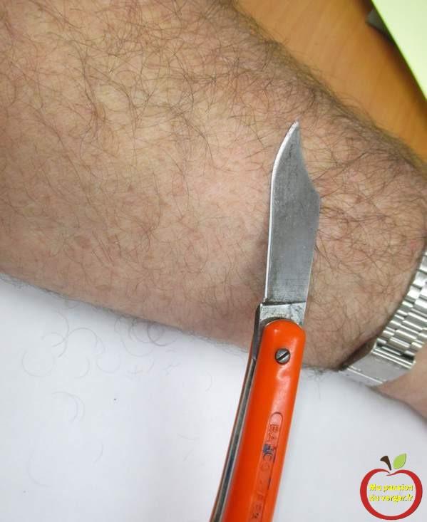 comment verifier affutage et affilage d'un couteau de greffage qui coupe bien.