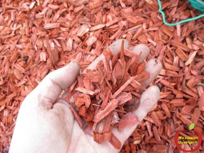 J'ai utilisé des chips colorés de paillis de copeau de bois rouge d'acajou, pour la décoration du potager en plus.