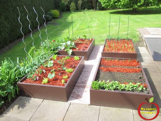 R aliser un potager en carr fa on permaculture ma for Permaculture petit jardin