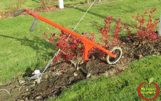 binage-et-desherbage-petit-fruits-jardin