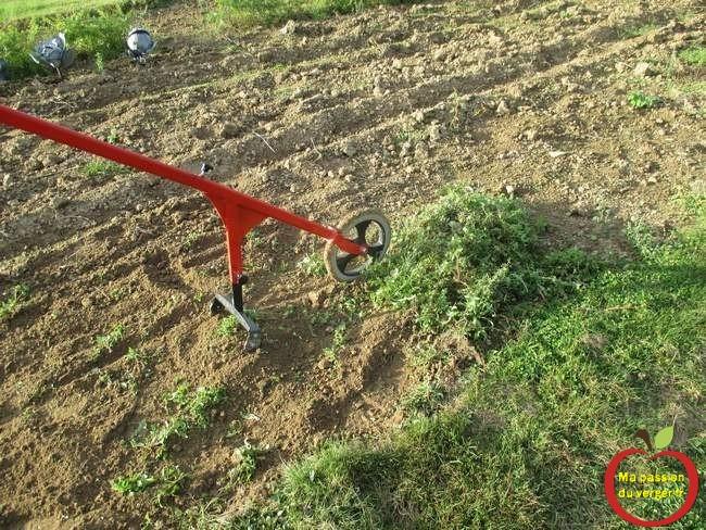 desherbage-de-votre-potager-sans-pesticides