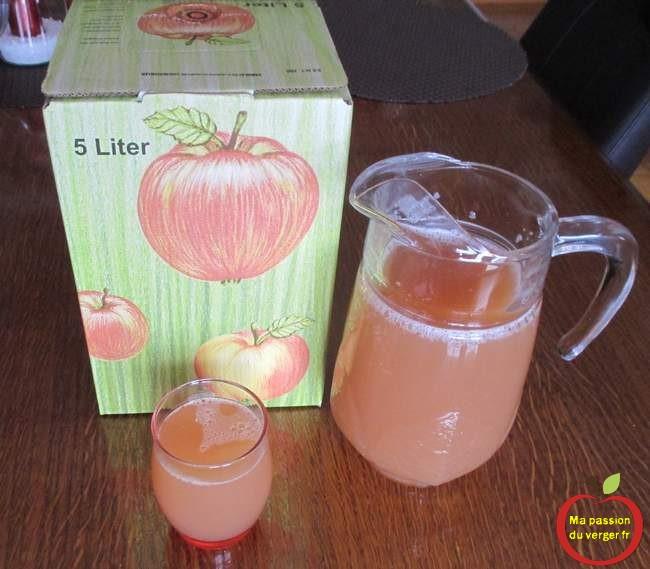 Jus de pomme pur jus- jus de pomme trouble - jus de pomme maison- comment faire un bon jus de pomme.