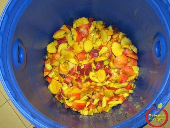 mise-en-fut-peches-alcool-peche- mise en fût des fruits pour alcool - gnole- schnaps - fruits alcool - pêche, nectarine pour alcool
