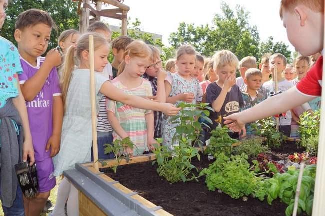 Cours de plantation potager en carré à l'école - plantation potager en permaculture à l'école.