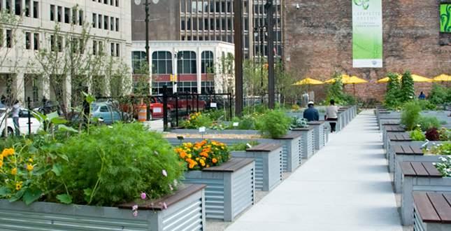 Potagers en carré permaculture en ville-potager en ville- la permaculture arrive en ville- la culture permaculture en ville- la culture de légumes bio en ville- comment planter des légumes bio en ville-potager bio en ville