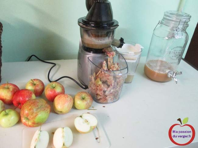 Faire un jus de fruits frais maison ma passion du verger - Jus de pomme maison ...