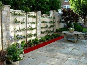 Planter des espaliers ou palmettes en jardinières contre un mur- arbres fruitiers sur terrasse, contre un mur- bac pour fruitier en acier rouillé- jardinière pour fruitier en permaculture-
